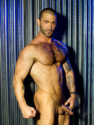 Junior Stellano - muscled hairy dude
